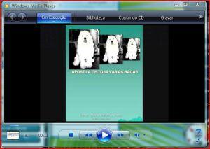 video slides apostila de tosa varias raças.